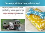 how much will luxury dog beds cost you