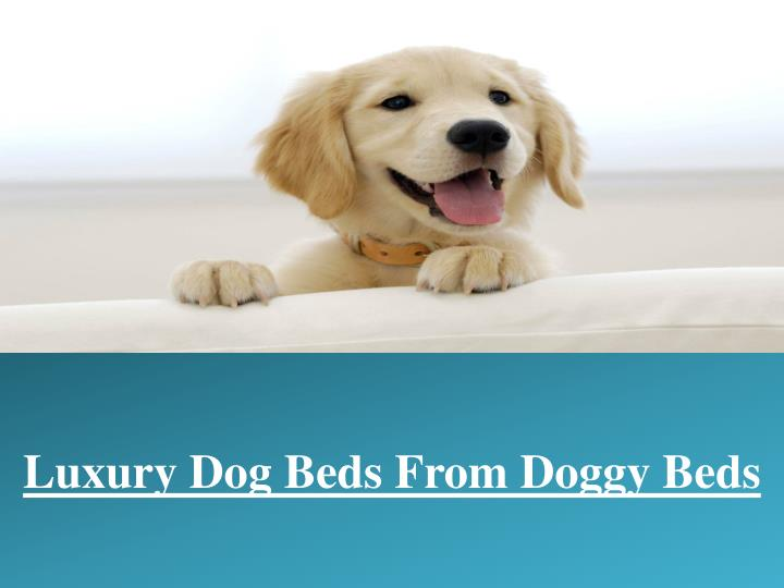 luxury dog beds from doggy beds
