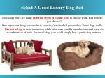 select a good luxury dog bed