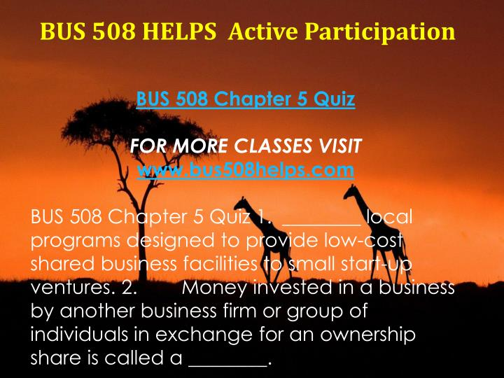 BUS 508 HELPS