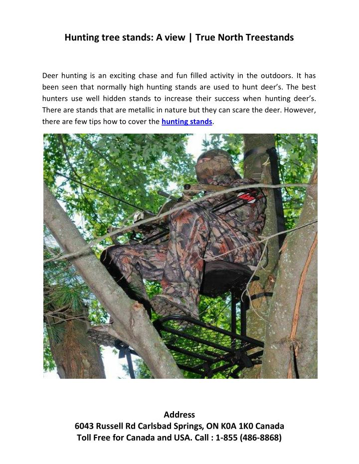 Hunting tree stands: A view | True North Treestands