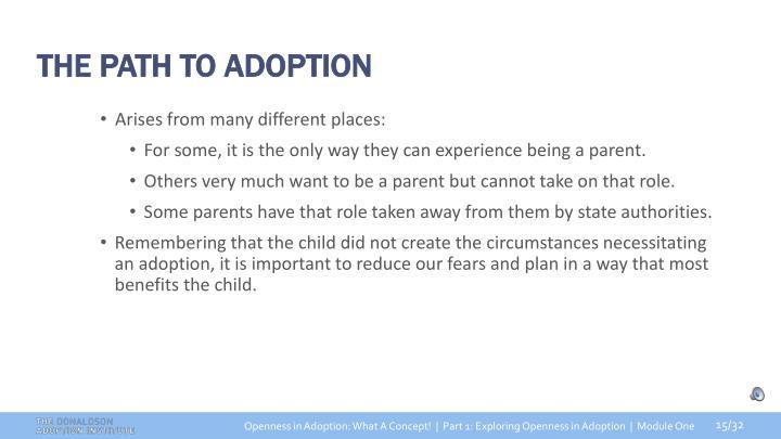 THE PATH TO ADOPTION