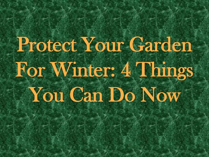 protect your garden for winter 4 things you can do now n.