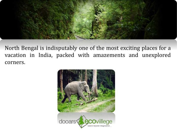 North Bengal is indisputably one of the most exciting places for a vacation in India, packed with am...