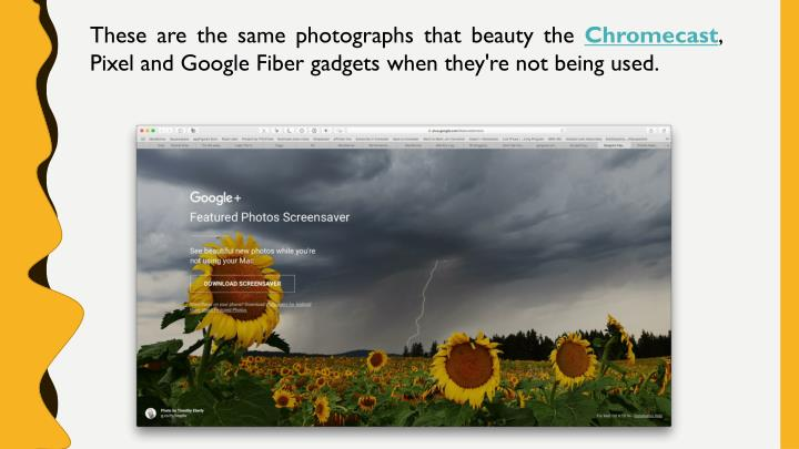 These are the same photographs that beauty the