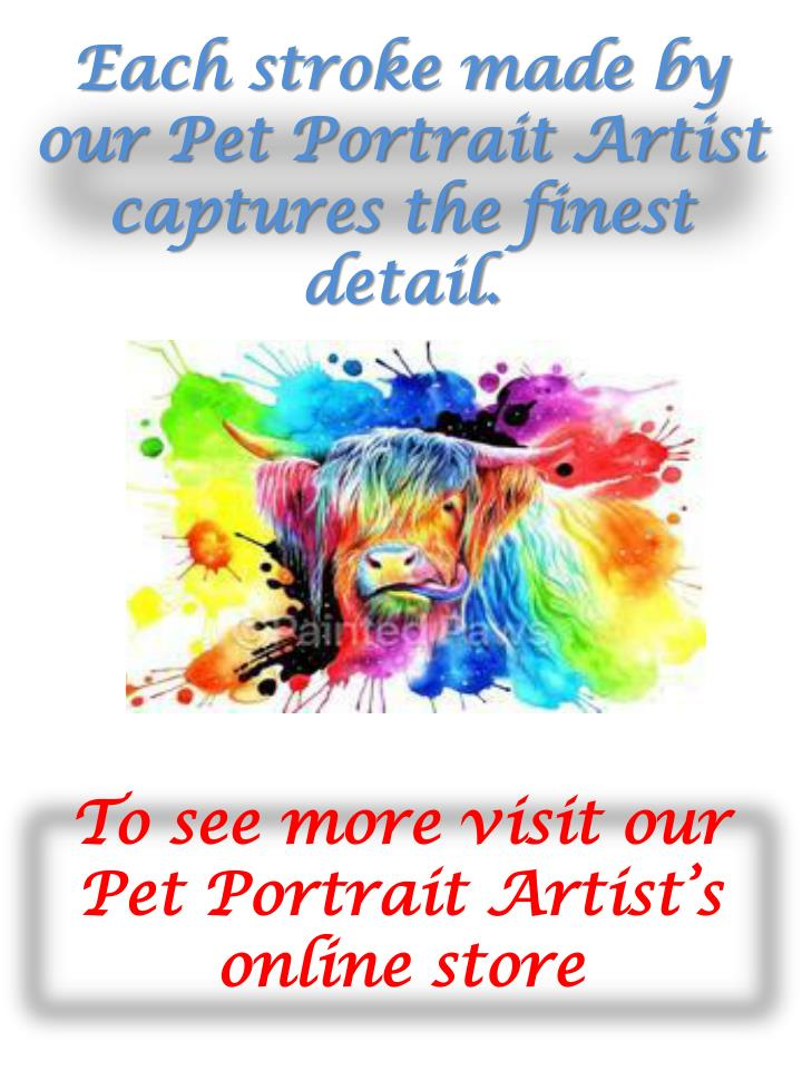 Each stroke made by our pet portrait artist captures the finest detail