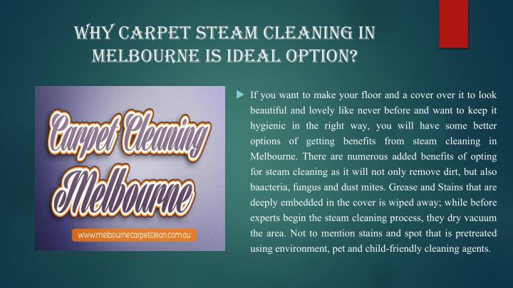 Why Carpet Steam Cleaning in