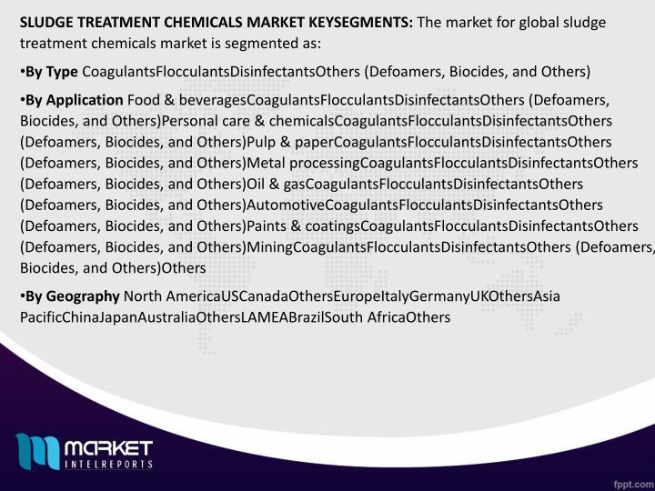 SLUDGE TREATMENT CHEMICALS MARKET KEYSEGMENTS: