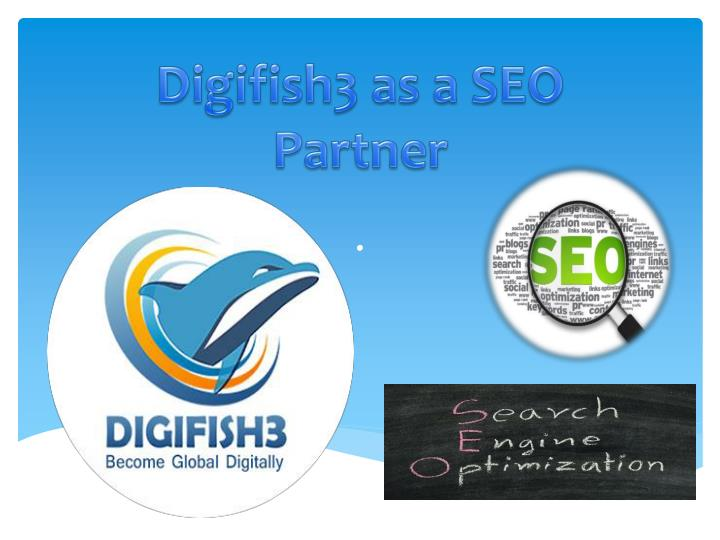 Digifish3 as a SEO Partner