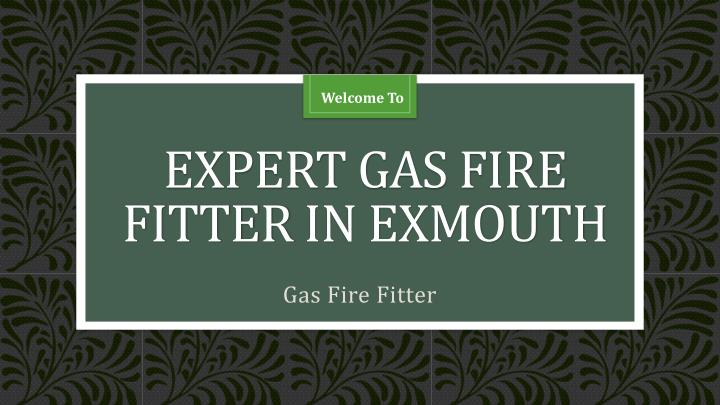 expert gas fire fitter in exmouth n.