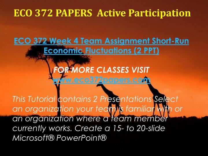 eco 372 team paper