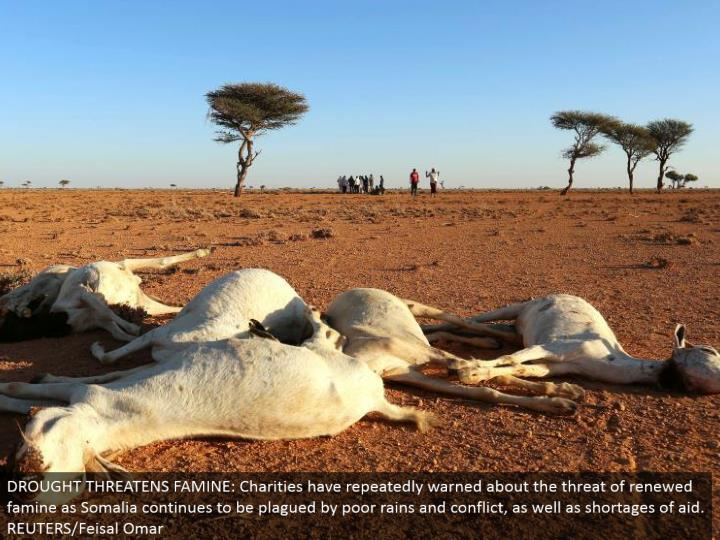 DROUGHT THREATENS FAMINE: Charities have over and over cautioned about the risk of restored starvation as Somalia keeps on being tormented by poor rains and strife, and also deficiencies of help. REUTERS/Feisal Omar