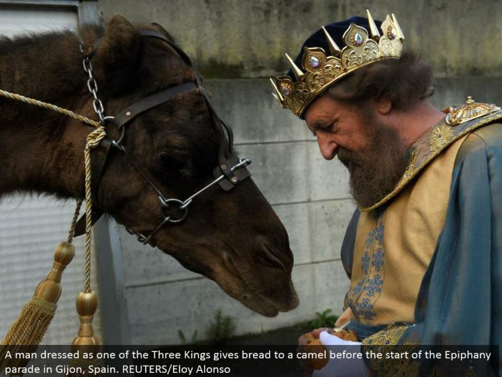 A man dressed as one of the Three Kings offers bread to a camel before the begin of the Epiphany parade in Gijon, Spain. REUTERS/Eloy Alonso