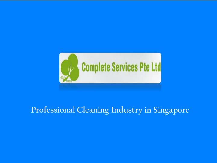 professional cleaning industry in singapore n.