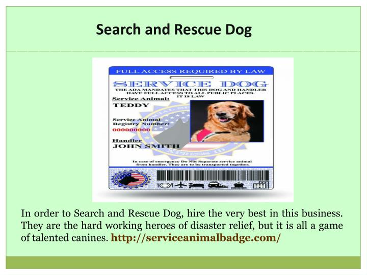 Ppt Emotional Support Dog Registration Powerpoint Presentation Free Download Id 7498145