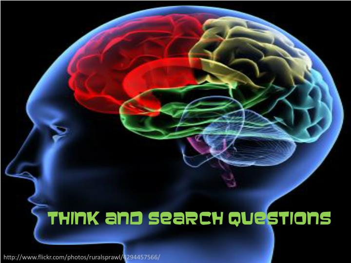 Think and Search Questions