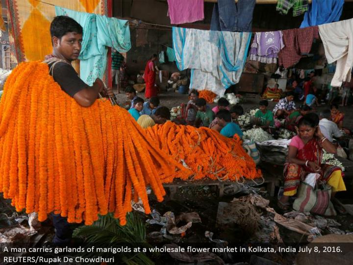 A man conveys wreaths of marigolds at a discount bloom showcase in Kolkata, India July 8, 2016. REUTERS/Rupak De Chowdhuri