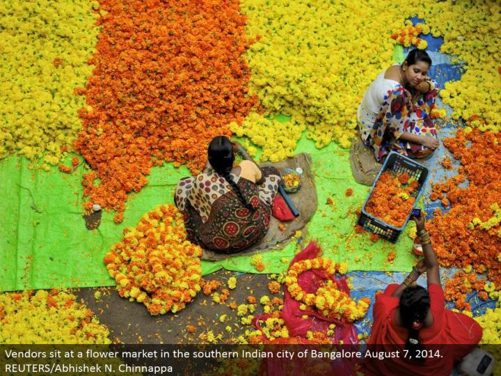Vendors sit at a blossom advertise in the southern Indian city of Bangalore August 7, 2014. REUTERS/Abhishek N. Chinnappa