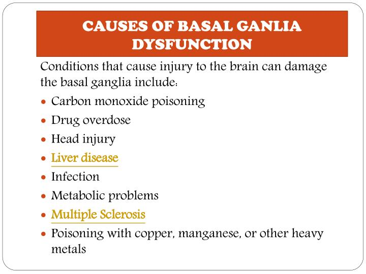ppt basal ganglia disease causes symptoms treatment and