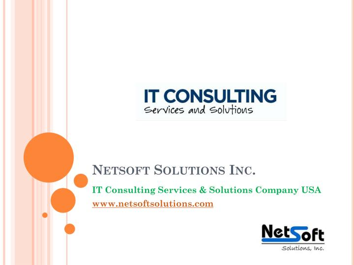 netsoft solutions inc n.