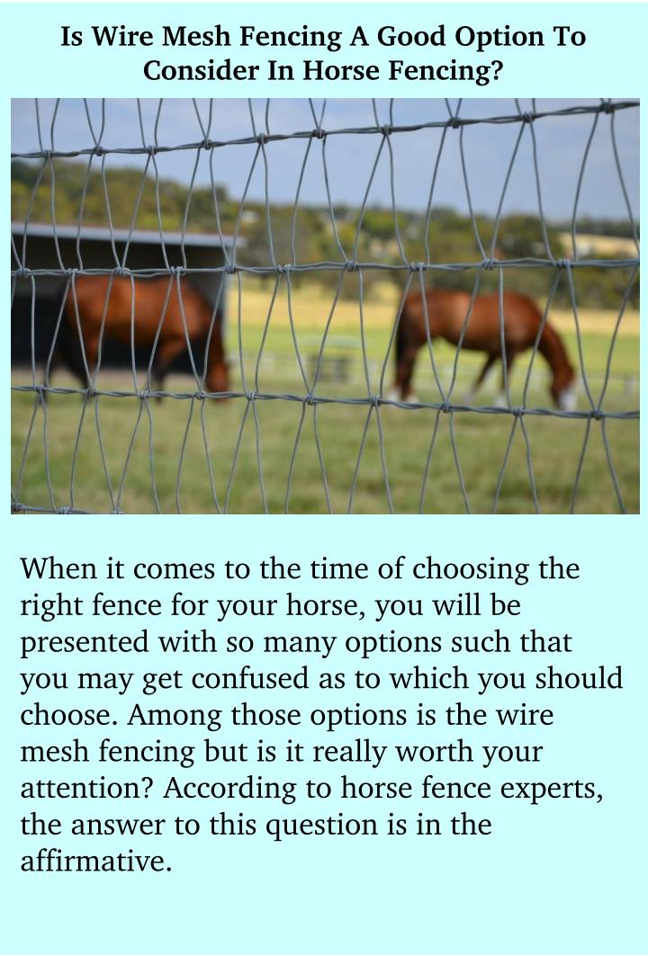 PPT - Is Wire Mesh Fencing A Good Option To Consider In Horse ...