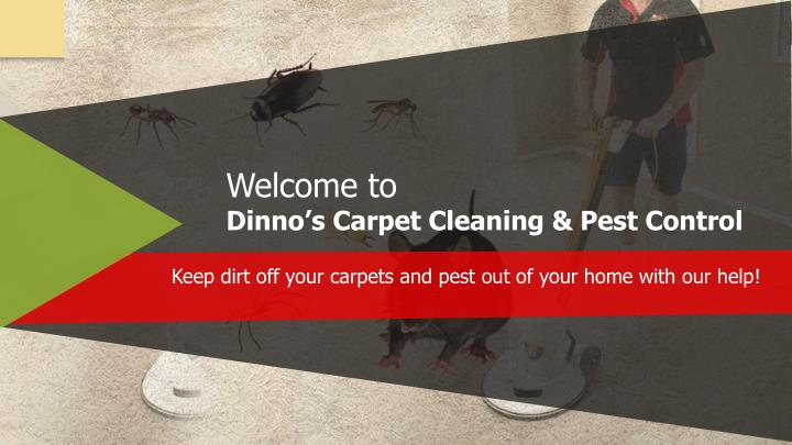 welcome to dinno s carpet cleaning pest control n.
