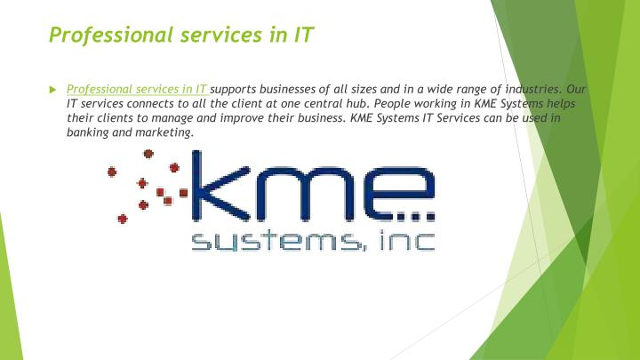 professional services in it n.