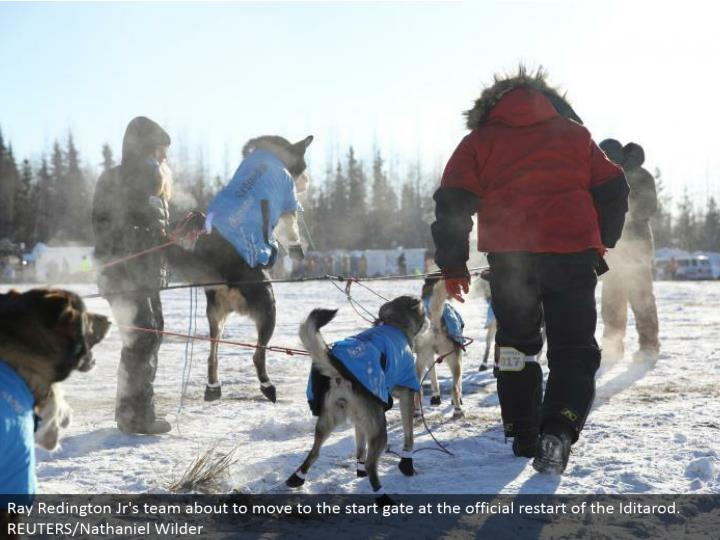 Ray Redington Jr's group going to move to the begin entryway at the authority restart of the Iditarod. REUTERS/Nathaniel Wilder