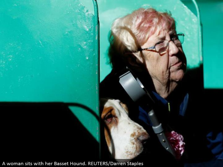 A lady sits with her Basset Hound. REUTERS/Darren Staples