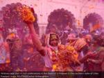 widows participate in holi festivities