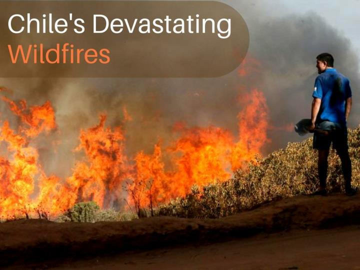 chile s overwhelming wildfires n.