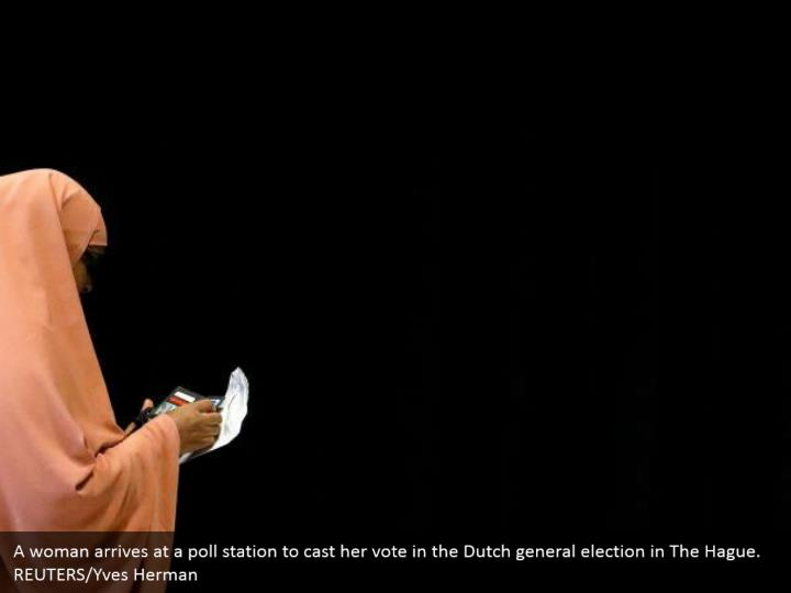 A lady lands at a survey station to make her choice in the Dutch general decision in The Hague. REUTERS/Yves Herman