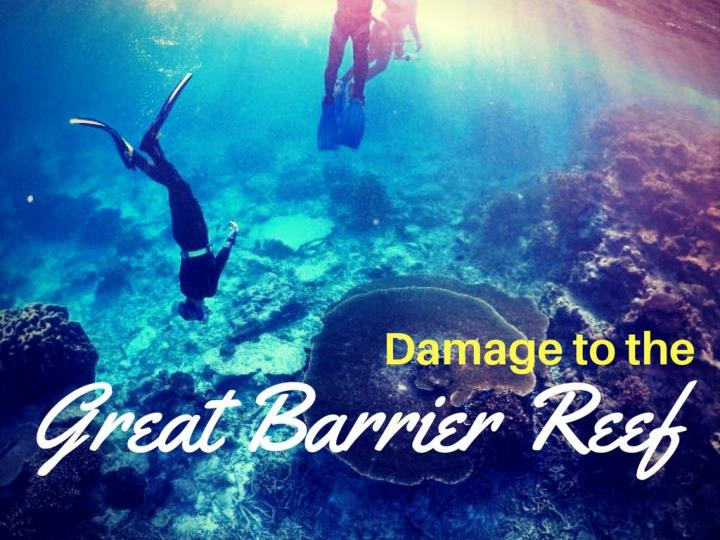 harm to the great barrier reef n.