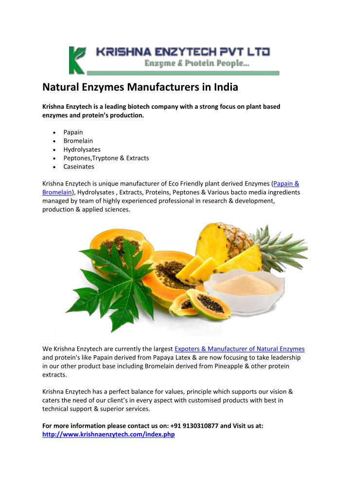 PPT - Natural Enzymes Manufacturers in India PowerPoint