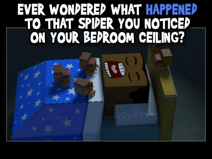 Ever wondered what happened to that spider you noticed on your bedroom ceiling?