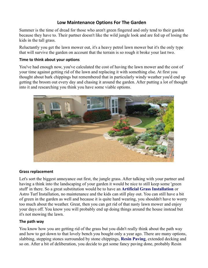 low maintenance options for the garden n.