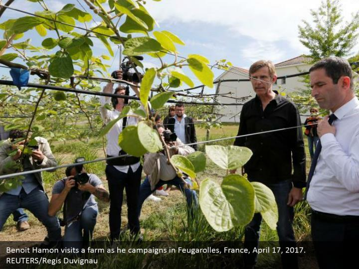 Benoit Hamon visits a farm as he campaigns in Feugarolles, France, April 17, 2017. REUTERS/Regis Duvignau