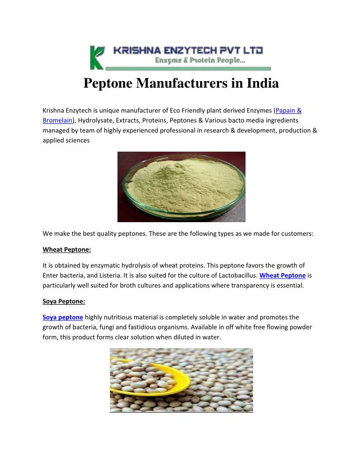 PPT - Peptone Manufacturers in India PowerPoint Presentation