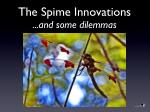 the spime innovations and some dilemmas