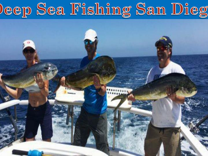 Ppt san diego fishing charters powerpoint presentation for Deep sea fishing san diego