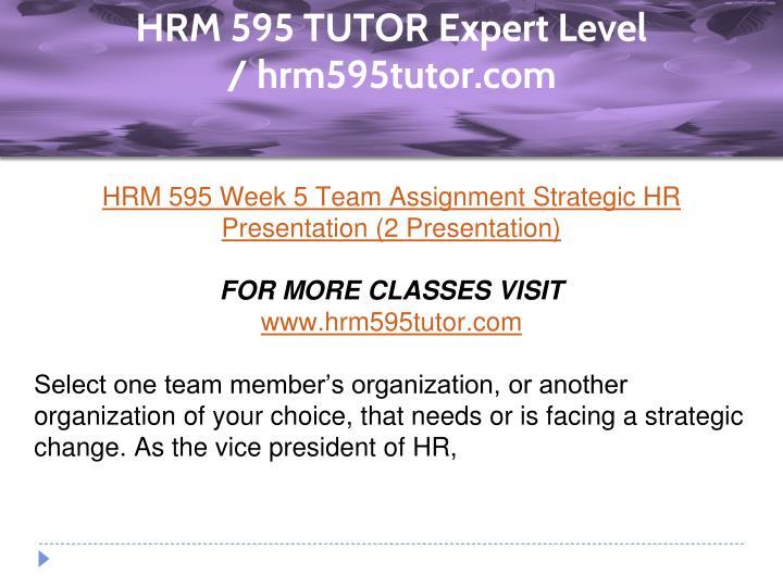 hrm 595 week 5