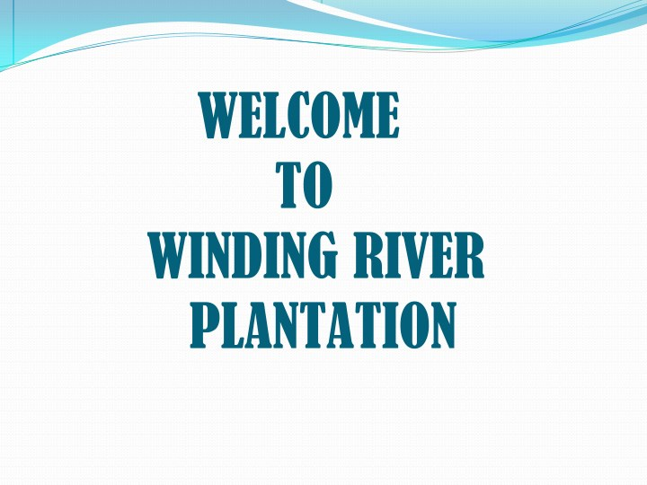 welcome to winding river plantation