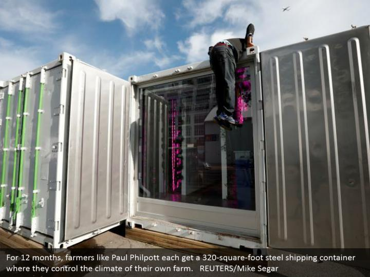 For 12 months, farmers like Paul Philpott each get a 320-square-foot steel shipping container where they control the climate of their own farm.   REUTERS/Mike Segar