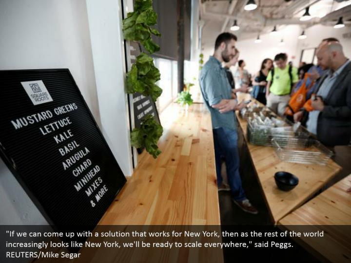 """""""If we can come up with a solution that works for New York, then as the rest of the world increasingly looks like New York, we'll be ready to scale everywhere,"""" said Peggs.   REUTERS/Mike Segar"""