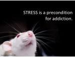 stressisaprecondition foraddiction