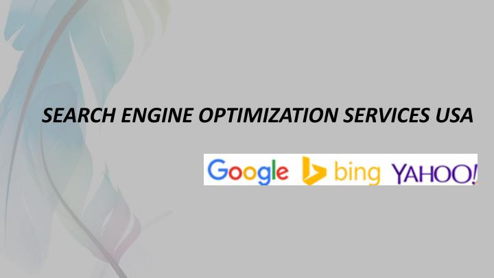 search engine optimization services usa n.