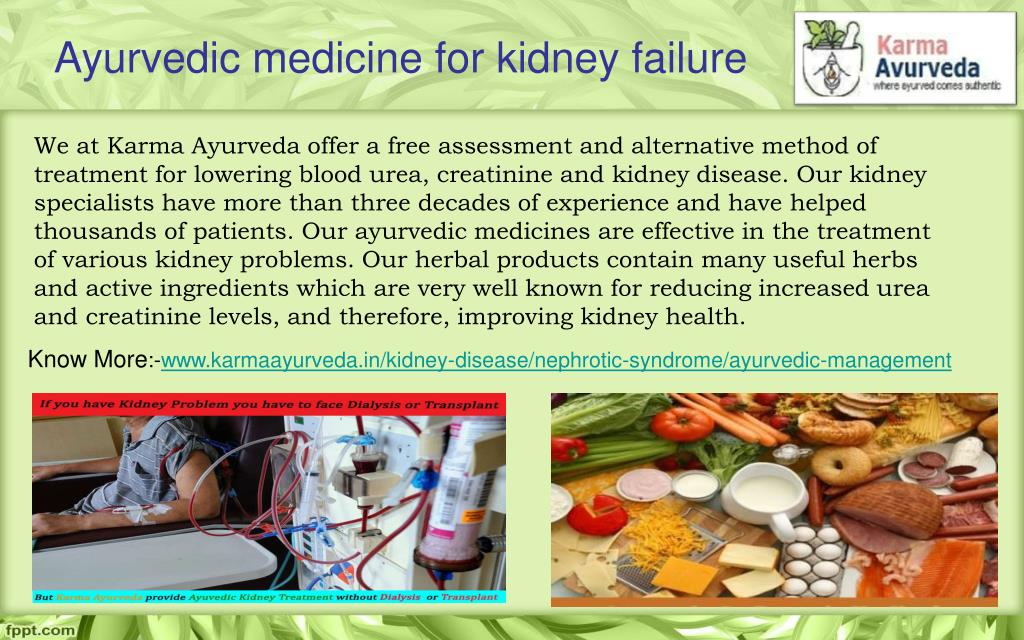 PPT - Ayurvedic medicine for kidney disease:- Medicine Used to Treat
