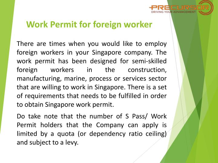 Ppt Singapore Work Passes And Work Permits For