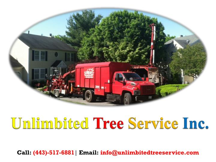 Unlimbited tree service inc 1