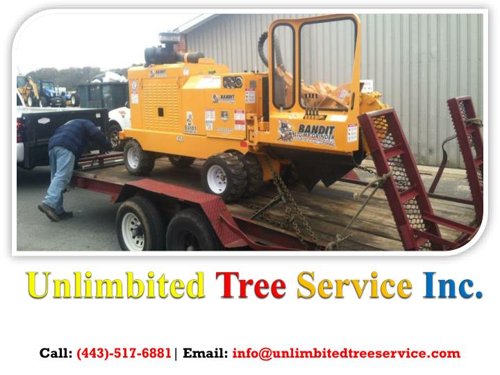 Unlimbited tree service inc 2